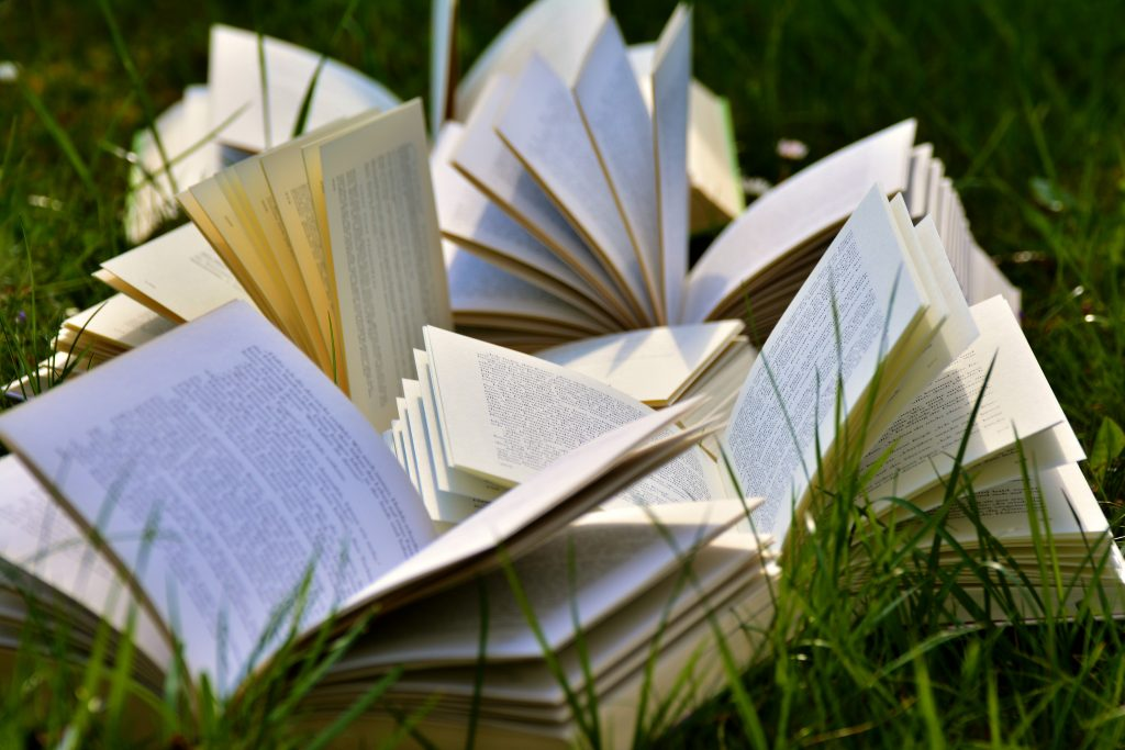 books in the summer